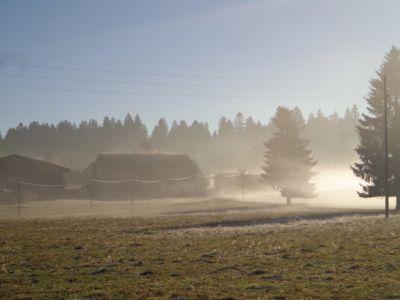 Les Cufattes dans le brouillard
